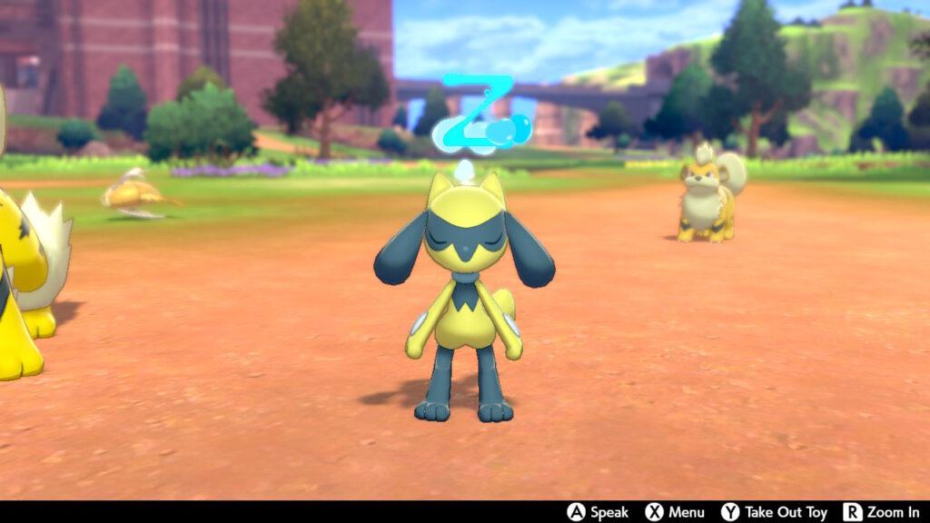 Shiny Riolu in Pokémon Sword Pokémon Shield